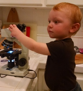 Alex checking out the microscope.