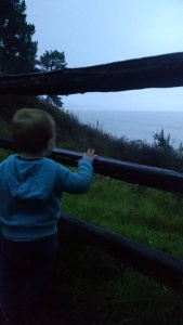 Alex looking at the Pacific.