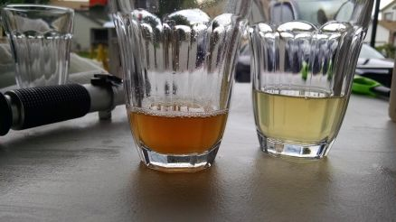 Samples of sweet wort (left) and the last runnings from the mash tun (right).