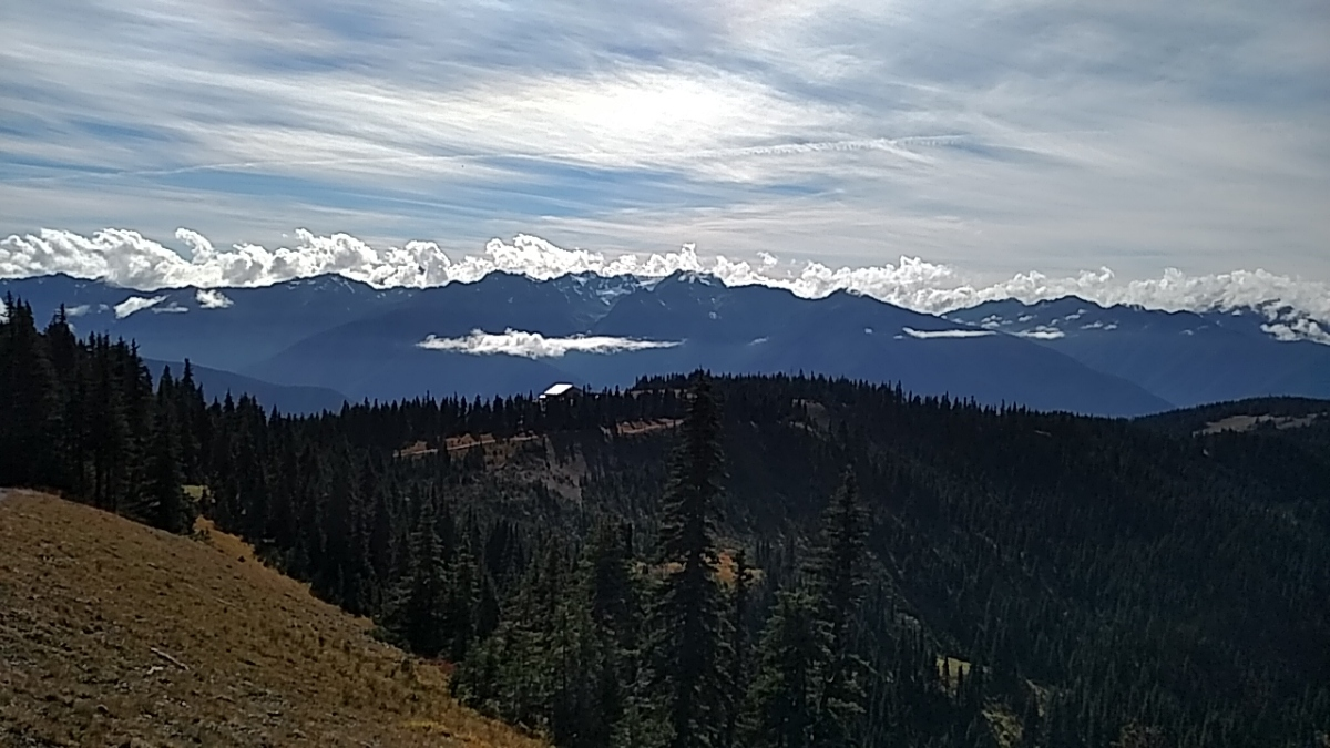 Pacific Northwest: Olympic NationalPark